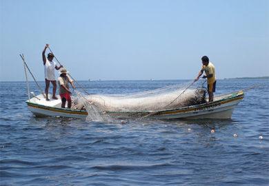 Pescadores deben pagar sus deudas para recibir apoyos