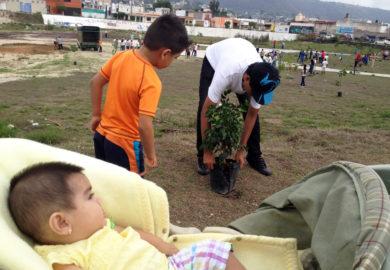 Ciudadanos se manifiestan contra la venta del estadio de beisbol plantando árboles.
