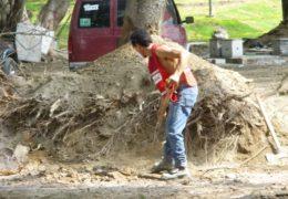 Herido el corazón de Tepic, solo destrozos hicieron en La Loma