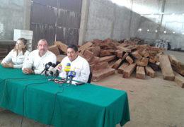 Aseguran madera con valor de medio millón de pesos en el mercado ilegal