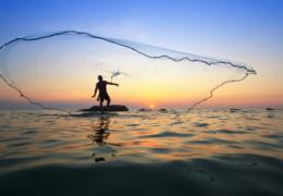Impulsan Sader y productores pesqueros trabajo coordinado, diálogo y unidad