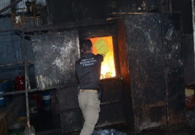 Incinera FGR más de seis toneladas de narcóticos en seis estados