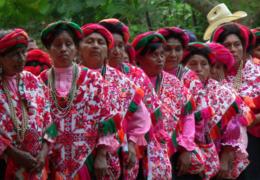 Necesario desplegar acciones efectivas para rescatar de la pobreza a 200 mil indígenas de la Huasteca potosina