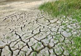 Priorizarán atención a comunidades de extrema marginación de las zonas áridas y en proceso de desertificación