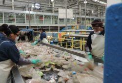 México recicla más de tres mil millones de botellas de PET