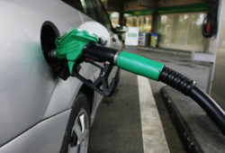 Gasolinas y luz no subirán de precio este año