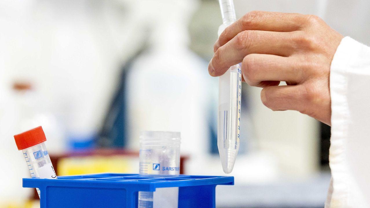 Vacuna contra covid da resultados positivos